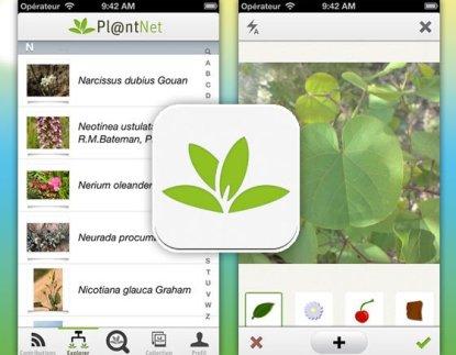 1-PlantNet-iPhone-Reconnaissance-Plantes-Fleurs
